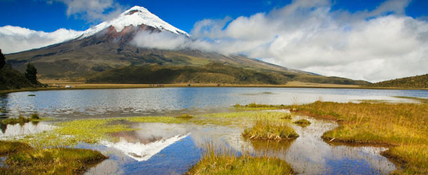 Study abroad adventure in Ecuador