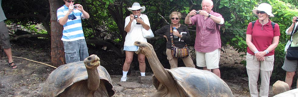 Ecuador trip planner to explore the Amazon rainforest, the Andes mountains and the Galapagos Islands in Ecuador