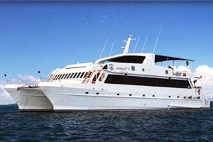 Cruise the Galapagos on a first class boat