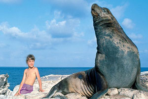 a galapagos island-hopper program from true ecuador travel