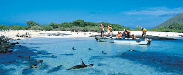 Galapagos Islands hopping tours