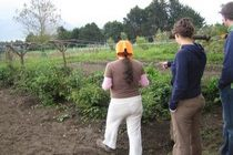 volunteer work in reforestation and organic farming and environmental education in the Andes of Ecuador