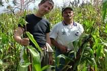 volunteer work in sustainable agriculture and agro forestry in the Andes of Ecuador